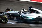 Fotogallery: le prove libere del GP della Malesia di Formula 1