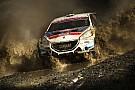 ERC Peugeot, ERC ile ralliye dönüyor