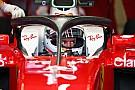 Fórmula 1 Vettel: Se oferecessem o Halo a Justin Wilson, ele aceitaria