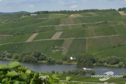 Vineyards in the Mosel valley