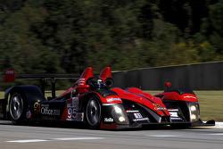 #95 Level 5 Motorsports Oreca FLM09: Scott Tucker, Marco Werner, Burt Frisselle