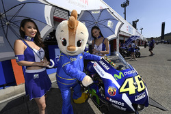 Hot grid girls with the bike of Valentino Rossi, Yamaha Factory Racing
