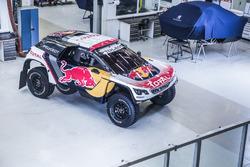 Decoración Peugeot 3008 2017