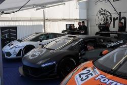 GT3 Paddock walkabout - Bulls in their pen