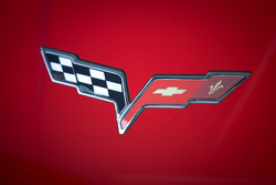 #99 GAINSCO/Bob Stallings Racing Chevrolet Corvette DP detail