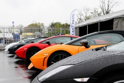 Some of the many Lamborghinis on display here