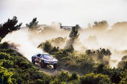 Сіріль Депре, Peugeot 3008DKR Maxi