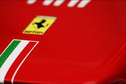 Ferrari neus met regendruppels