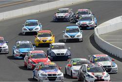 Tiago Monteiro, BMW 320 TC, Wiechers-Sport