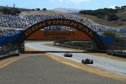 Wayne Taylor Racing