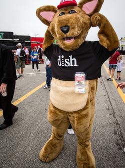 Dish mascot
