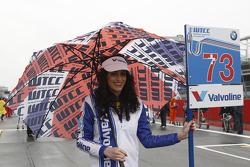 Grid girl of Fredy Barth, Wiechers Sport BMW E90 320 TC