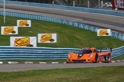 #4 8 Star Motorsports Corvette DP: Luis Diaz, Emilio DiGuida