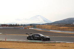 Modulo DRAGO CORSE NSX GT3(大津弘樹)
