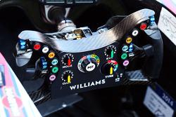 Williams FW36 direksiyon