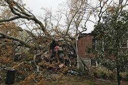 La maison des Brady à Atlanta, sur laquelle un arbre est tombé pendant qu'ils regardaient le Grand Prix d'Australie