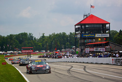 #31 EFFORT Racing Porsche GT3 R: Ryan Dalziel