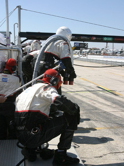 ADT Champion Racing crew members ready for pitstop