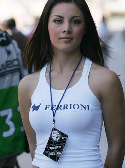 A lovely Ferrioni girl