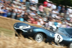 Jaguar D Type Short Nose - Michael Quinn