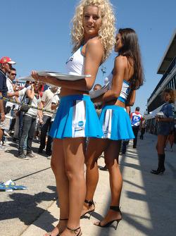 The lovely Konica Minolta girls