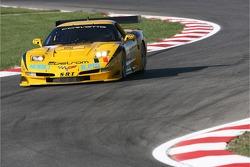 #18 SRT Corvette C5R: Tom Cloet, Davide Amaduzzi