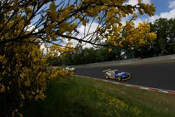 #64 ORMS Racing BMW Z4M: Marko Hartung, Stefan Neuberger, Frank Engstler