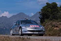 Gilles Panizzi et Hervé Panizzi, Peugeot Sport Peugeot 206 WRC