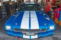Mustang clásico