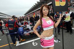 Grid girl of Sebastian Vettel, Scuderia Toro Rosso