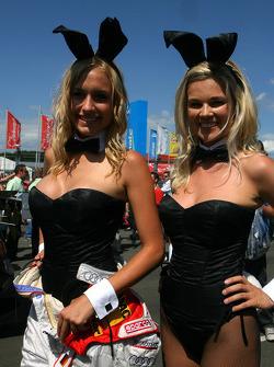 Playboy bunnies on the grid
