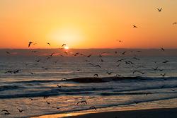 Lever de soleil sur Daytona Beach