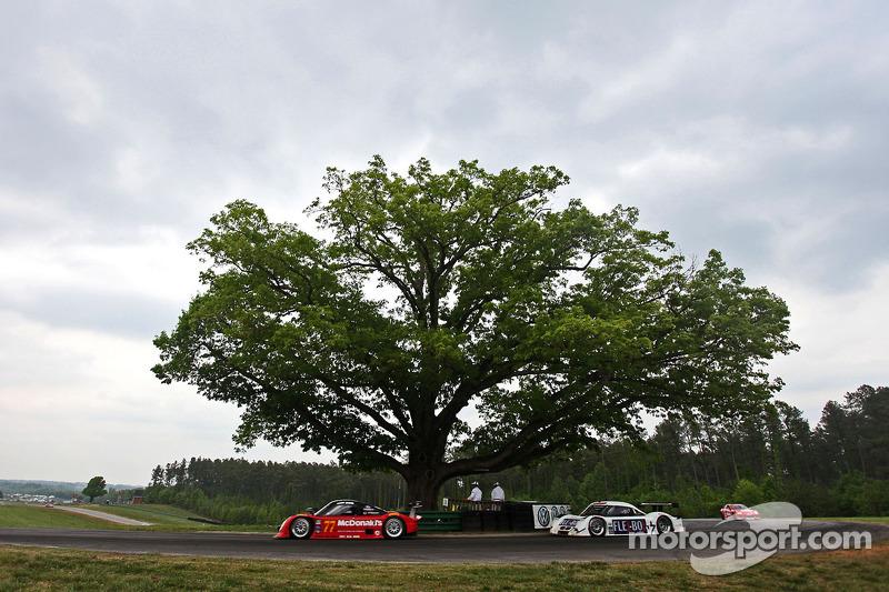 Auto's racen langs Oak Tree