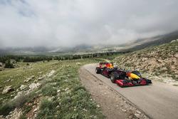 Carlos Sainz Jr. guida la Red Bull RB7 nella Foresta dei cedri di Dio, Libano