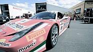 Ferrari Challenge Montreal 2013 (HP-Tech Motorsport)