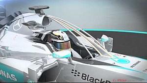 Piola: F1-Cockpitschutz