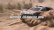 Дакар 2016 : победа Peugeot