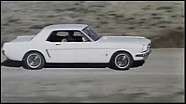 The Mustang Story
