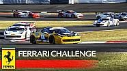 Ferrari Challenge APAC, Фуджі 2016 - Найкращі моменти Гонки 1