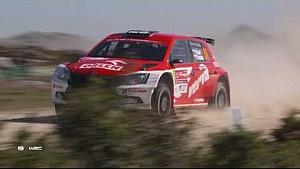 ORLEN Team rally de Portugal 2017