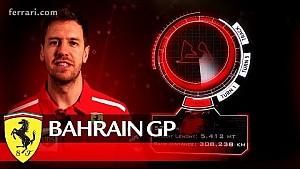 Bahrain Grand Prix preview - Scuderia Ferrari 2018